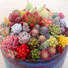 This look like a fruit bowl !!!!¡