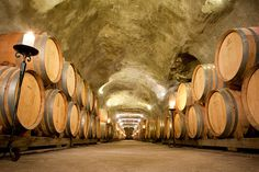 Explore wine country & New Zealand's largest wine cave, less than an hour…