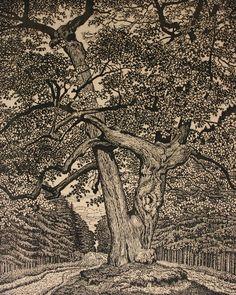 ✨  Albert König, Maler & Graphiker  (1881 Eschede - 1944 Unterlüß) - Halali-Linde, Holzschnitt 1923