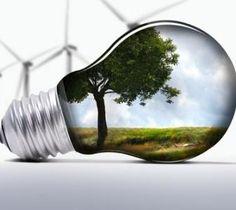Biobased economy: 1 van de 5 megatrends