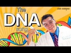63 best genetics structure of dna replication images on an educational music video about dna lyrics contains your genetic code dna a molecule that makes up all your chromosomes double helix structure fandeluxe Images