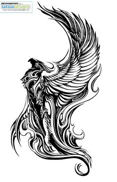 Born of phoenix.