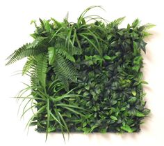 This artificial green wall /vertical garden panel can be clipped together to form infinite dimension to attach to any interior or exterior wall. Works wonderfully as a quirky twist to your kitchen or bathroom and also is great for disguising unsightly outdoor areas.