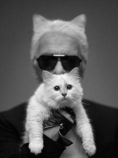 Choupettes Geheimnis Interview: Karl Lagerfeld Wen...