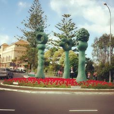 ANZAC DAY #commemoration roundabout traffic circle covered in poppies .. For those soldiers who died in the war - Titiangi