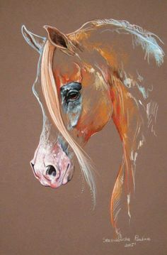 Chestnut Arabian Horse Art Print by Paulina Stasikowska All prints are professionally printed packaged and shipped within 3 - 4 business days Choose from multiple sizes and hundreds of frame and mat options Horse Drawings, Art Drawings, Horse Artwork, Pastel Art, Equine Art, Animal Paintings, Horse Paintings, Pastel Paintings, Art Pictures