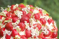 Strawberry Wild Flower cake. I doubt I'll ever be able to make this but it looks so beautiful
