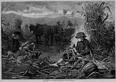 WINSLOW HOMER LAST DAYS OF HARVEST CORN PUMPKINS HORSES SHUCKING CORN ...