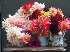 my french country home - Dahlias
