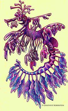 Leafy sea dragon by honey-art on deviantART Seahorse Art, Seahorses, Drawing Sketches, Drawings, Sketching, Sea Creatures Drawing, Leafy Sea Dragon, Green Bodysuit, Water Fairy
