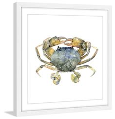 Blue Crab - Marmont Hill