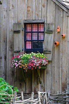 Window and window box
