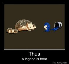 Oh no. lol. I know a little person that would LOVE this!!! Sonic the Hedgehog :-D