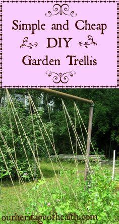 DIY garden trellis   Our Heritage of Health