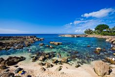 Explore the tidepools and lava formations of Pupukea Beach Park. Shark's cove was one of my favorite places to snorkel