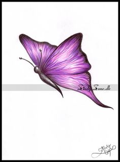 butterfly drawings | Zindy-Zone.dk - Fantasy and Emotional Drawings - Butterfly
