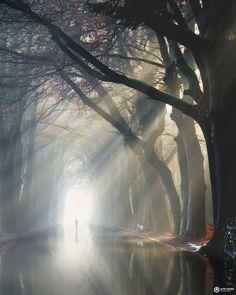 Elland road intimidating atmosphere of venus