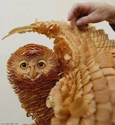 wood shavings sculpture - I can't stop looking at this.