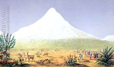 Chimborazo - (after) Humboldt, Friedrich Alexander, Baron von - Oil Painting Reproductions Animal Paintings, Paintings For Sale, Friedrich, Colour Yellow, Oil Painting Reproductions, Baron, Color Theory, Oil Painting On Canvas, Ecuador