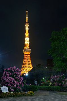 The Lightened Up Tokyo Tower - 東京タワー・ライトアップ