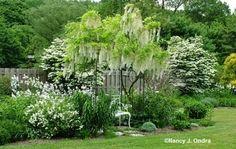 a white cascading garden