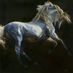 Fine Art by Heather Theurer – Andalusian Dance II Pretty Horses, Beautiful Horses, Animals Beautiful, Horse Photos, Horse Pictures, Horse Drawings, Animal Drawings, Horse Artwork, Andalusian Horse