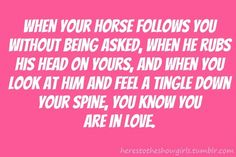 yes....except I do not allow horses to use me as a scratching post...that is a sign of disrespect in my opinion