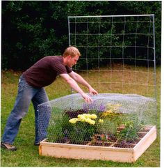 Build your own Critter Cage  (this site has great gardening DIY stuff, incl. Building your own Greenhouse, Harvesting Rainwater, Planning & Designing, and more...)