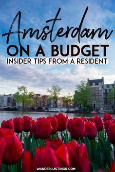 Tips for visiting Amsterdam on a budget with insider tips from a resident for vi. - Tips for visiting Amsterdam on a budget with insider tips from a resident for vi. Tips for visiting Amsterdam on a budget with insider tips from a r. Europe Destinations, Europe Travel Tips, European Travel, Travel Advice, Budget Travel, Travel Guides, Travel Hacks, Travel Packing, Travel Essentials