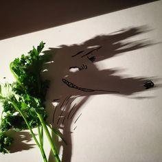 Vegetarian Wolf #parsley #paisley #park #hungrylikethewolf #duranduran #peter #wolf #peterpan #illustration #doodle #drawing #draw #art #photo #potd #shadow #shadowology #foodporn #vegetables #animal #sketch #instaart #peterselie #littleredridinghood #texavery