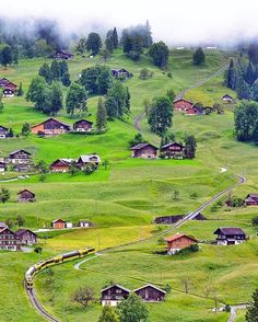 Grindelwald - Switzerland 🇨🇭 Photo by @sennarelax