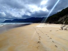Tasmania's lonely and remote places have a beauty all of their own. Wilderness is not just about inland locations - our coasts are staggeringly beautiful too.