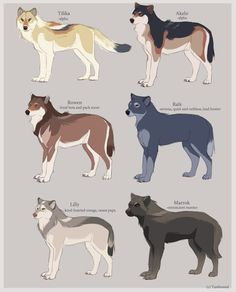 Tilika's Pack by Tazihound on DeviantArt