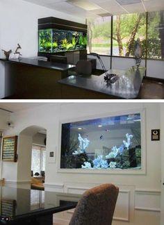 Aquariums Saltwater Fish Tanks modern interior design with fish aquariums
