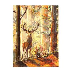 Original Acrylic Painting,Canvas,Fine Art,Wall Art,12 x 16 inches,30 x... ($115) ❤ liked on Polyvore featuring home, home decor, wall art, acrylic wall art, forest home decor, acrylic animal paintings, acrylic painting and forest wall art