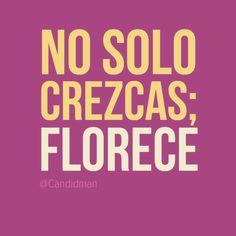 """No sólo crezcas; Florece"". #Citas #Frases @Candidman"