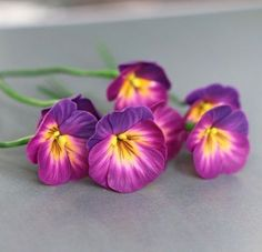 fimo/polymer clay flower - pansies