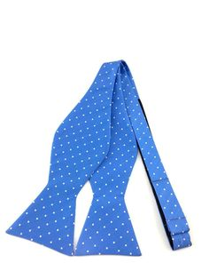 Sky Blue with Small White Polka Dots Self-Tied Bow Tie Ties Online, Formal Tie, Find A Match, Bowties, Wedding Men, Blue Backgrounds, Groomsmen, Dapper, Color Combinations