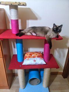 Aquí os dejo el tutorial para hacer un rascador para gatos,espero que os sea de ayuda,el diseño y la decoración va un poco a gusto del consu... Kittens And Puppies, Cats And Kittens, Crazy Cat Lady, Crazy Cats, I Love Cats, Cool Cats, Diy Cat Toys, Cat Towers, Cat Playground