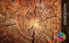 A madeira esteve sempre ligada ao homem, desde os tempos primitivos até a actualidade, foi e sempre será uma matéria prima de excelência para todos nós. O homem aprendeu a trabalhar e a usar a madeira