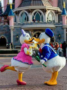 Donald and Daisy <3