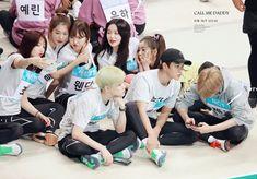 K Pop, Exo Red Velvet, Fandom Kpop, Red Valvet, Nct Yuta, Kpop Couples, Lucas Nct, Korean Aesthetic, Korean Star