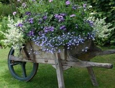 a repurposed garden wheelbarrow planter filled with beautiful shades of blues, lavenders and white flowers!
