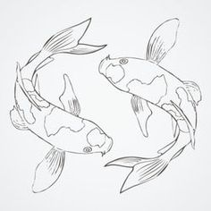 Koi Fish Sketch #sketch #fish