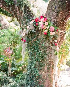 flowers adorning this tree make for a wonderful ceremony backdrop and #ruffledblooms addition | photo @michellemarch floral design @sullivan_owen day-of coordination and catering @billhansencatering venue @villa_woodbine wedding dress @rosa_clara wedding veil @ericakoesler wedding shoes @badgleymischka bridesmaid dresses @jcrew groom and groomsmen attire @suitsupply more on #ruffledblog #ceremonydecor