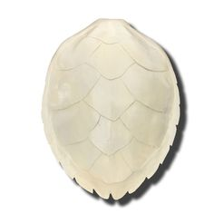 Our turtles are hand made and hand painted.  Each one is unique, some variations may occur.  Colors: Solid ivory  As seen in Traditional Home February-March 2014. (refer to photo 2)