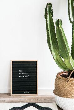 Eine Light Box ist super – aber unser DIY Letter Frame ist noch cooler! Warum? Na weil er von Euch ganz alleine gemacht wird und ihn deshalb ganz bestimmt noch niemand hat. // DIY Tutorial Letterboard Letter Frame Quotes Zitate Dekoidee Deko