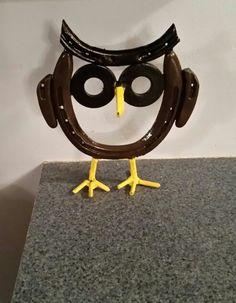 Horseshoe owl