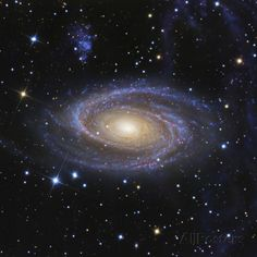 Messier 81, or Bode's Galaxy, is a Spiral Galaxy Located in the Constellation Ursa Major 写真プリント