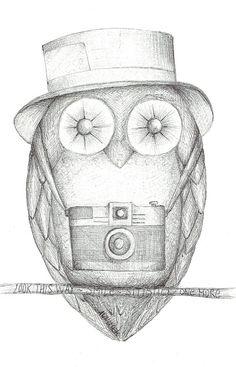 'The Owl said': Paparazzi